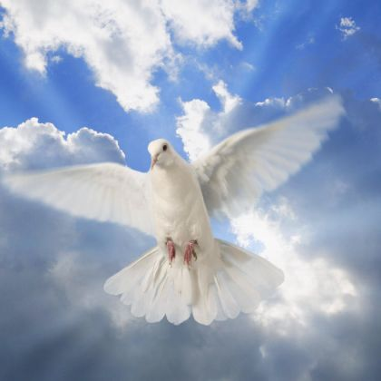 http://victorrockhillministries.com/vrm_messages/wp-content/uploads/2015/04/LIFE-AND-DEATH-IN-THE-SPIRIT.jpg