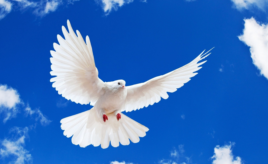 The Gift Of The Holy Spirit