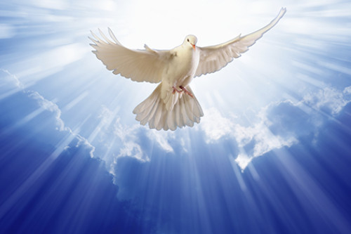 Mini-Message, Receive The Holy Spirit
