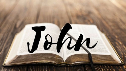 Bible Study - Verse by Verse - Book of John (Chapters 15)
