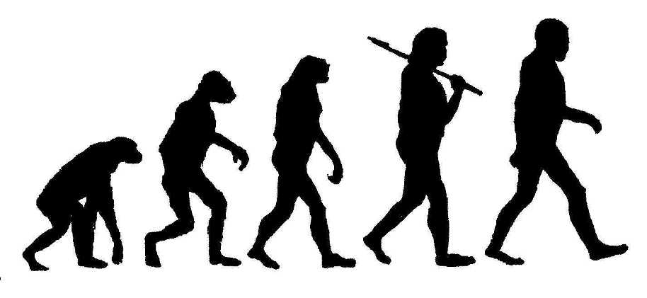 Believing Evolution