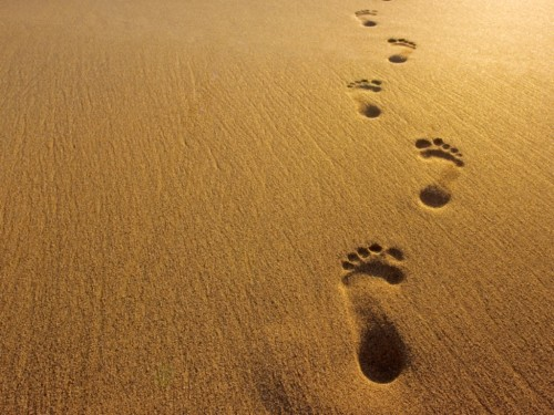 Every Place Your Feet Shall Tread