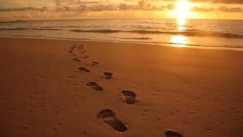 Guide Your Feet In The Way of Peace
