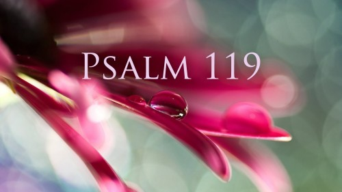 Bible Study – Verse by Verse – Psalm 119